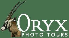 Oryx Logo