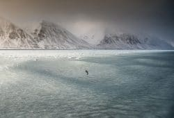 Svalbard Photography Tours