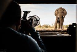 Mashatu - Botswana Photo Tour(1)
